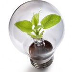 Green Energy Solutions for Homes & Businesses